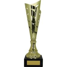 One Direction Series Cup Gold