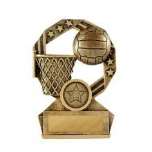 Bronzed Aussie Netball Award