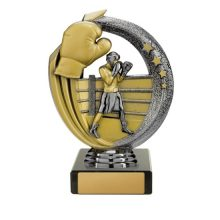 Boxing Trophy