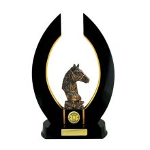 Timber Horseshoe Trophy With 25mm Centre