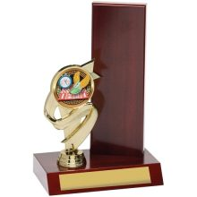 Wing Trophy With 25mm Centre